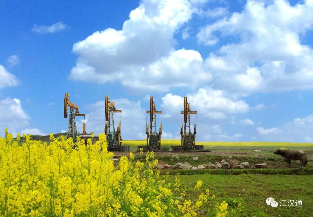 江汉油区发现潜江组埋藏最浅稀油油藏