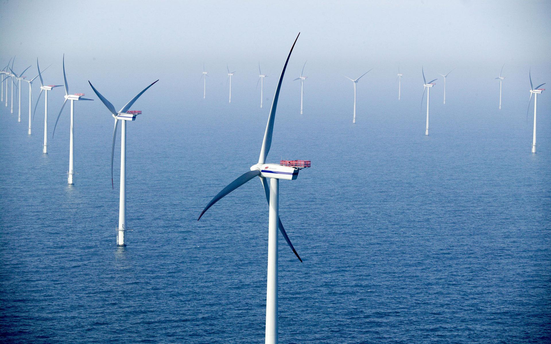 广东阳江规划建设全国首个风电城,助力实现碳达峰碳中和目标